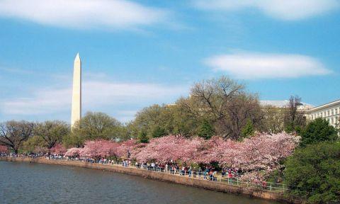 Du lịch Washington DC tự túc khám phá nhiều điều thú vị