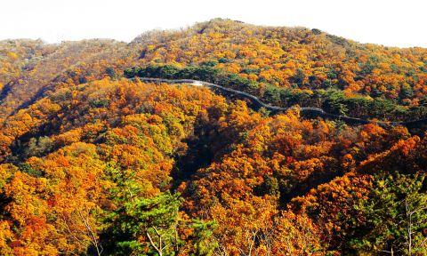 Những địa điểm đẹp nhất Hàn Quốc
