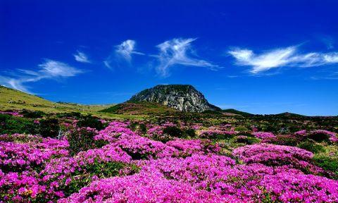 Khám phá những ngọn núi xinh đẹp tại Hàn Quốc