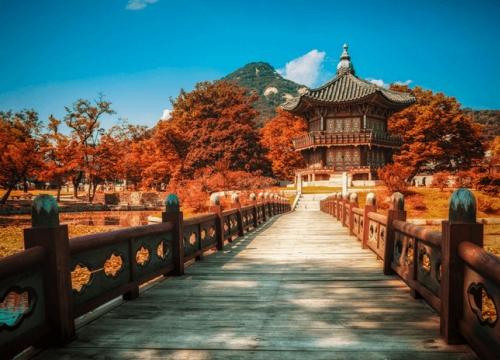 Du lịch Hàn Quốc lễ hội mùa thu
