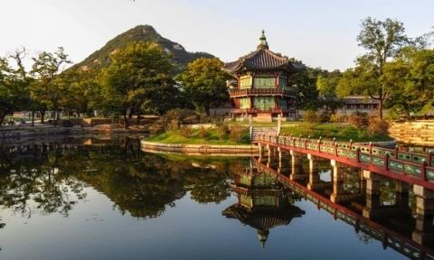 Ưu đãi giá vé máy bay đi Seoul khứ hồi từ Hà Nội chỉ 424 USD