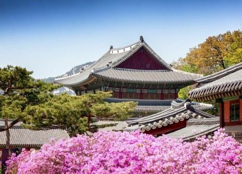 Trải nghiệm du lịch Hàn Quốc