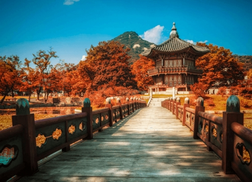 Tuyệt Đẹp Lễ Hội Mùa Thu Ở Hàn Quốc