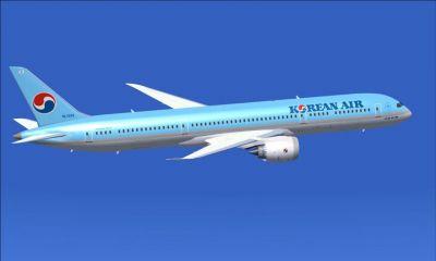 Vé Máy Bay Korean Air Đi Tampa