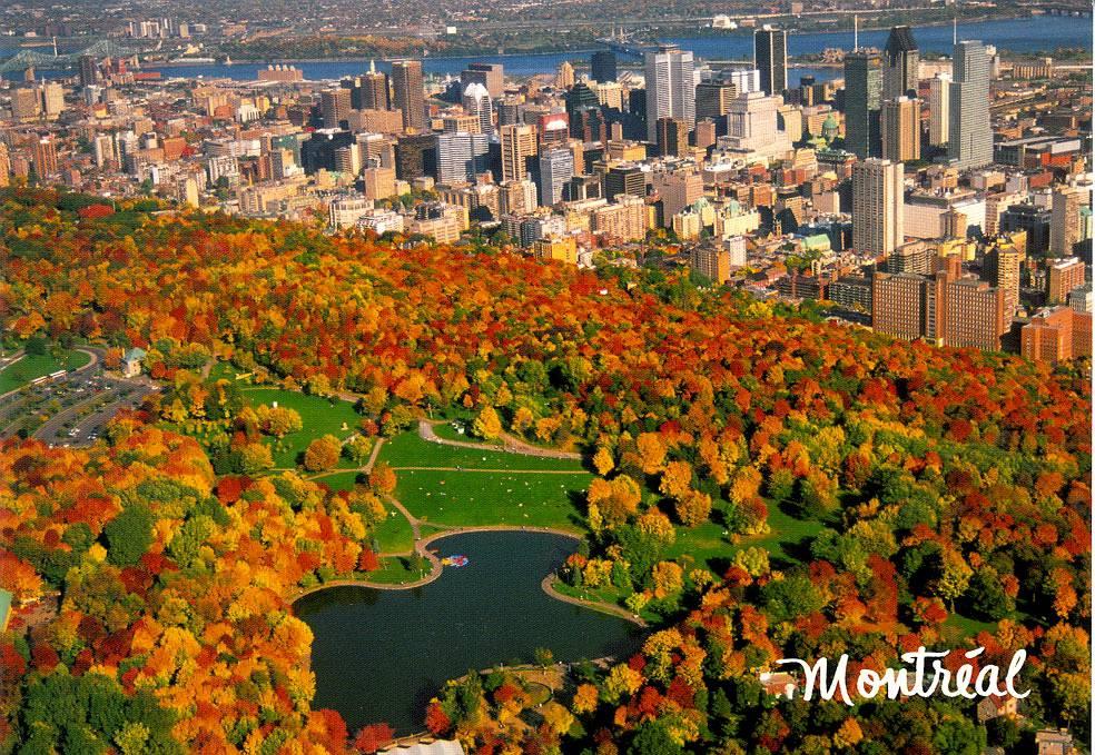 Vé Máy Bay Đi Montreal Giá Rẻ Koren Air 2