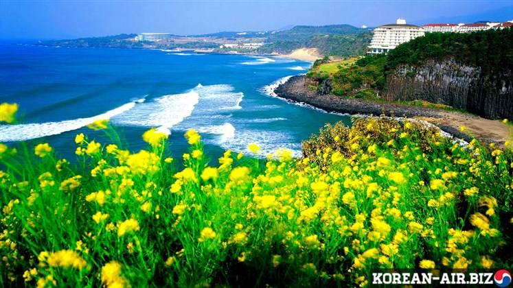 Vé Máy Bay Đi Jeju Hàn Quốc Giá Rẻ 1