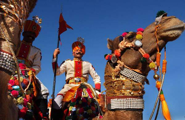 lễ hội chợ phiên lạc đà ở ấn độ