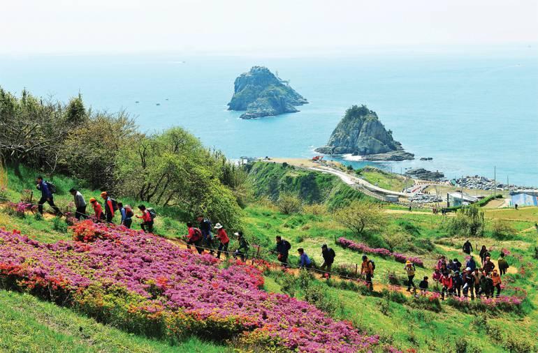 10 nơi phải ghé khi có vé máy bay đi Busan