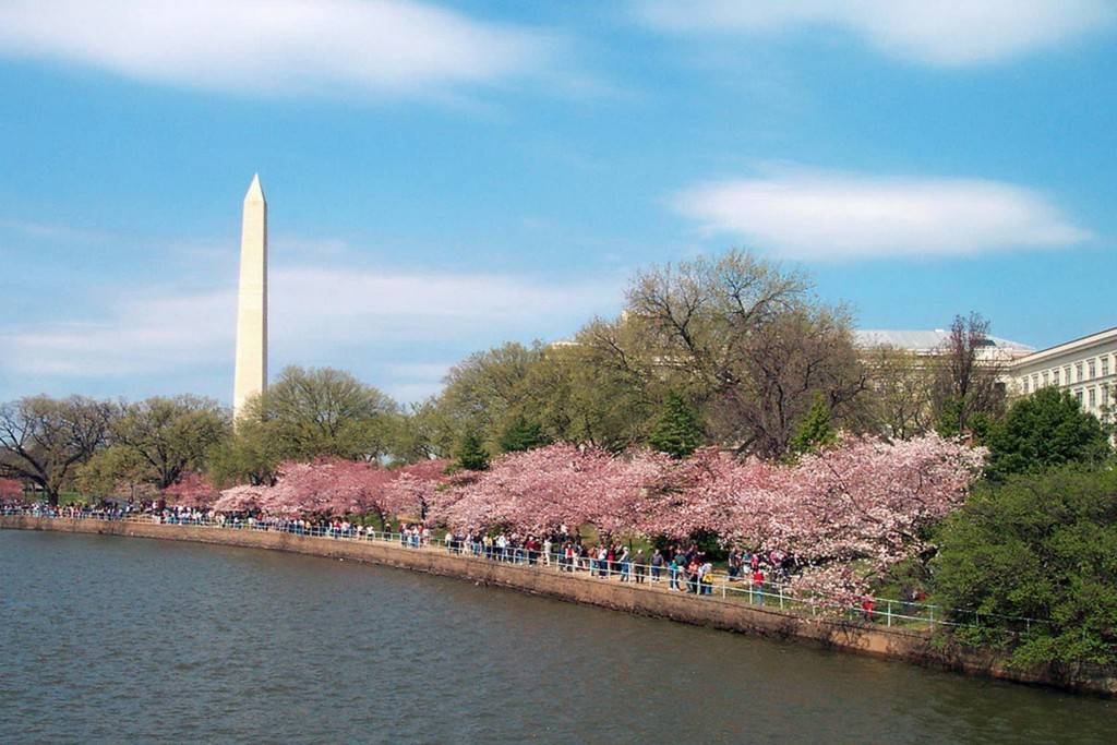 Du lịch Washington DC tự túc
